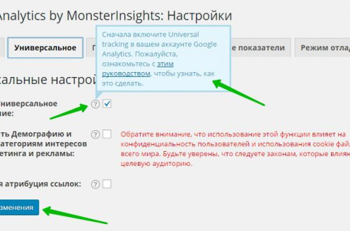 Google Analytics by MonsterInsights настройка плагина
