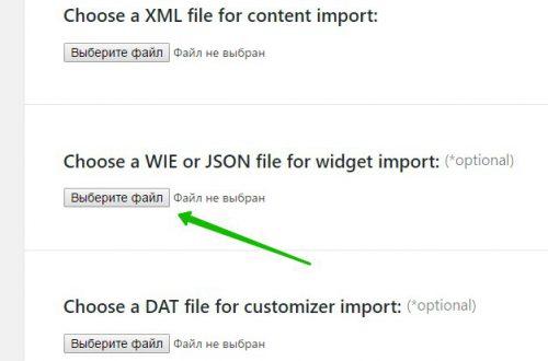 Demo Import импортировать контент настройки темы WordPress