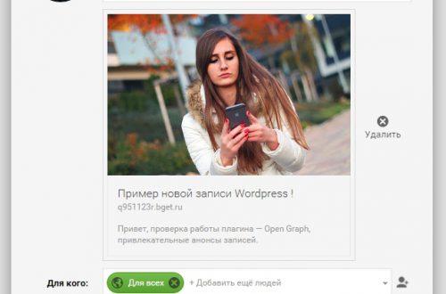 Настроить вид записей в соцсетях Open Graph Protocol WordPress