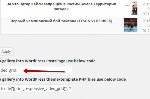Адаптивная видео галерея сетка на сайт wordpress !