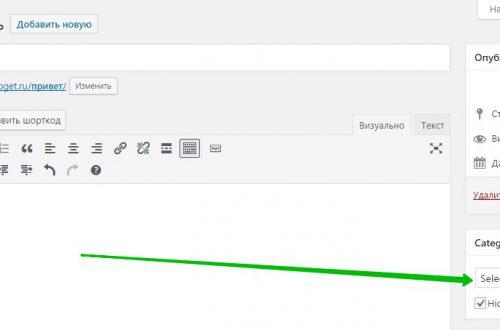 Прилепить запись на странице категории плагин WordPress
