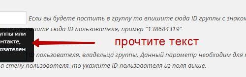 Автопостинг записей с сайта wordpress в группу вконтакте плагин !