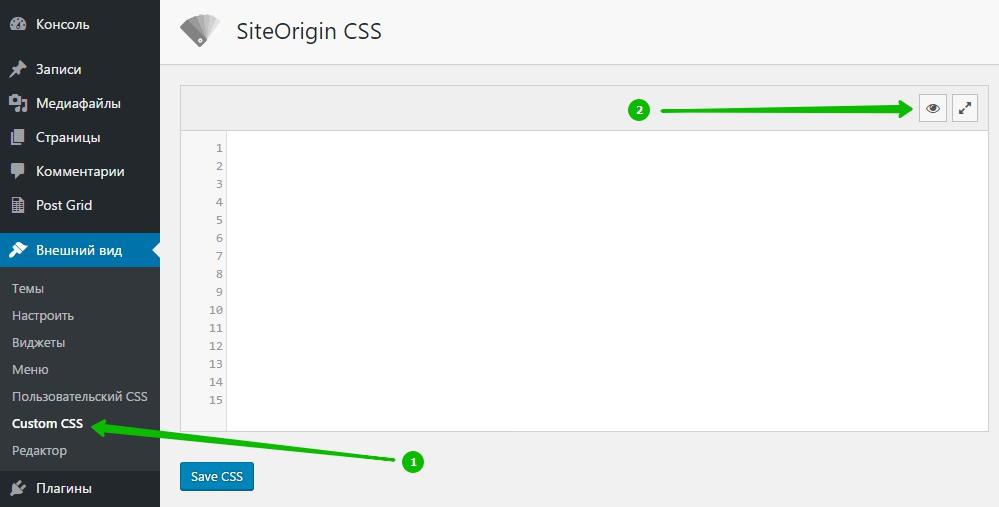 Внешний вид Custom CSS