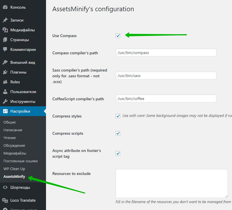 AssetsMinify's configuration