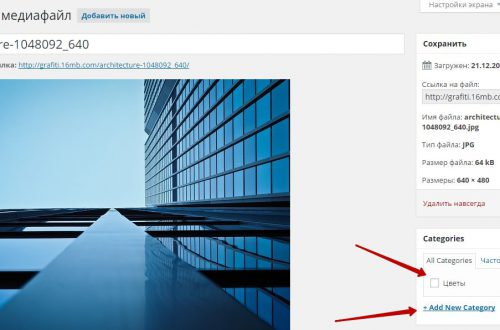 Сделать категории для изображений и медиафайлов сайт wordpress