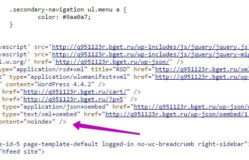 Закрыть от индексации страницу на wordpress без robots txt