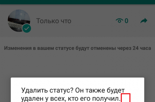 Как удалить статус в ватсапе WhatsApp