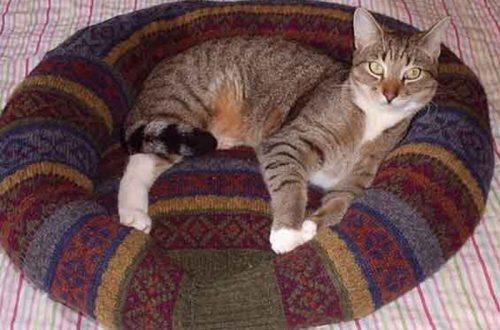 10 лайфхаков со старым свитером: с любимыми не расстаются