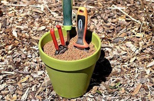 ТОП 10 лайфхаков для огорода и сада: хорошего урожая!
