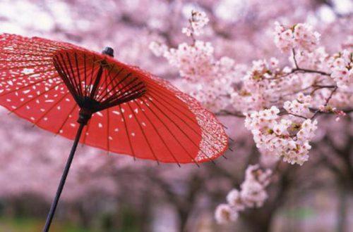 ТОП 10 лайфхаков для тех, кто собирается в Японию: едем в Страну восходящего солнца