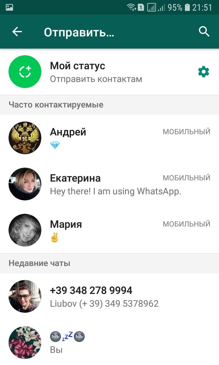 ватсап контакты