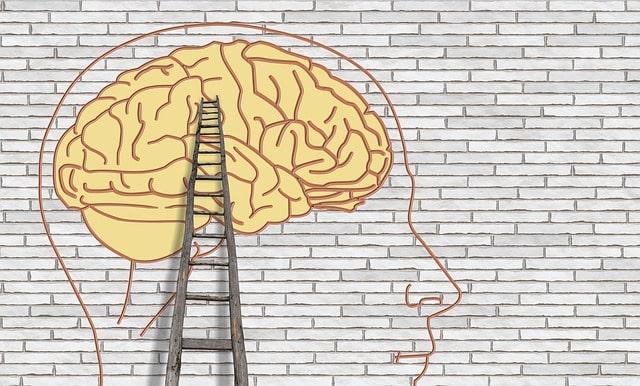 мозг лестница голова