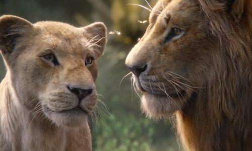 Disney хотят сделать продолжение «Короля Льва»