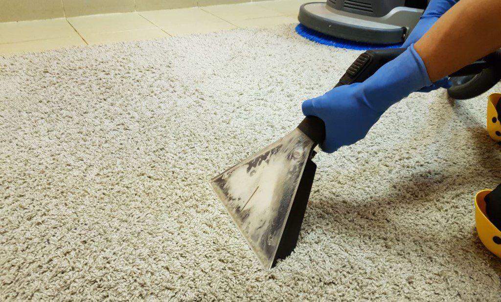 Этапы и преимущества химчистки ковролина